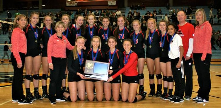 Crusader Volleyball Team - Section 2A Champions
